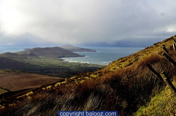 goula beara cork