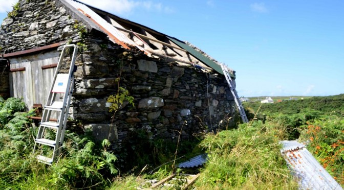 Roofing old shed