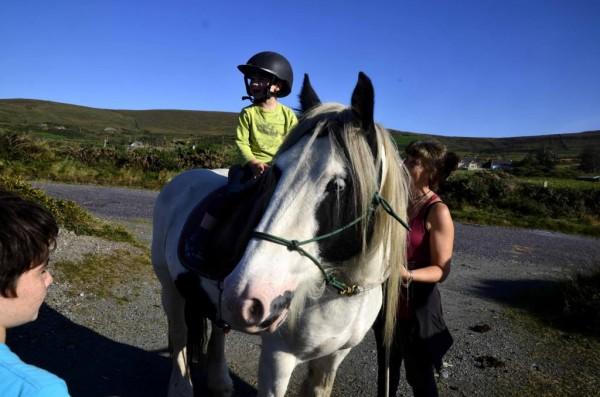 Salvador the pony