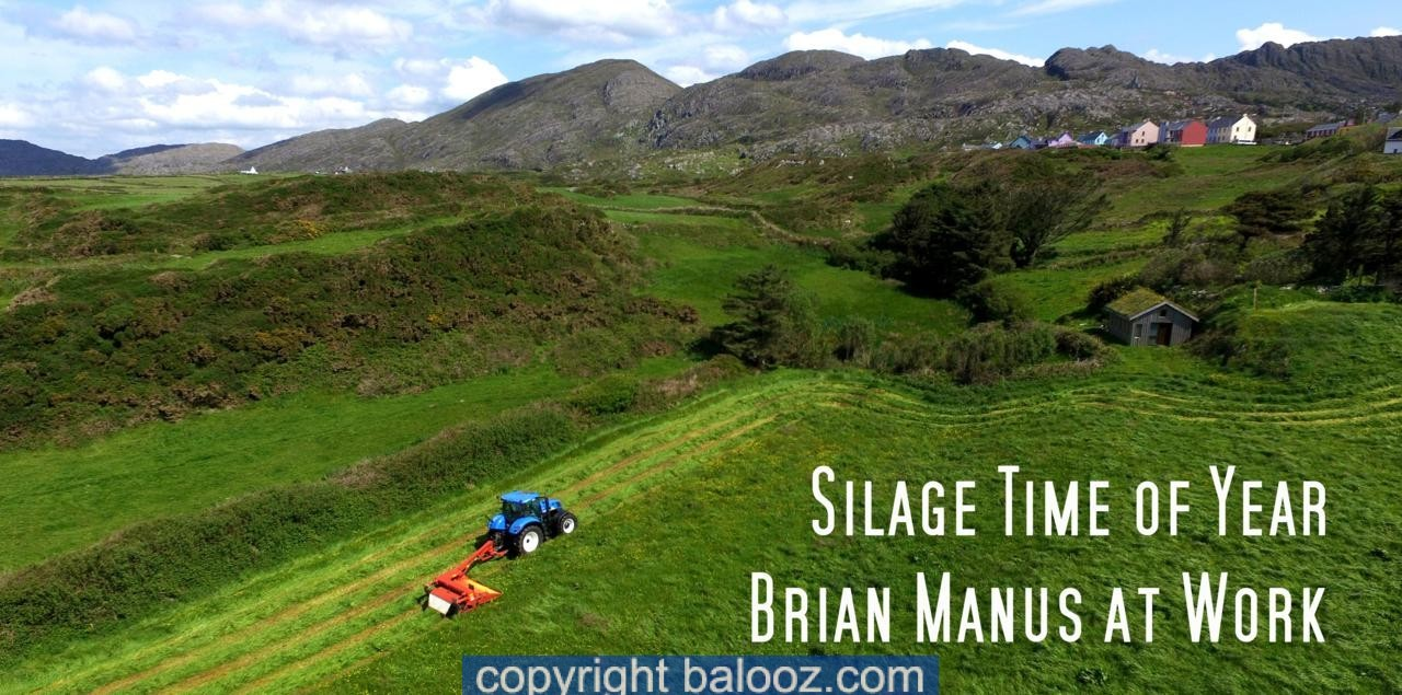 silage west cork