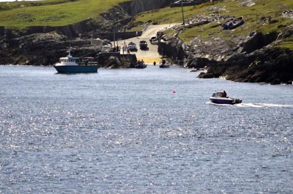 Swimming Dursey Sound1