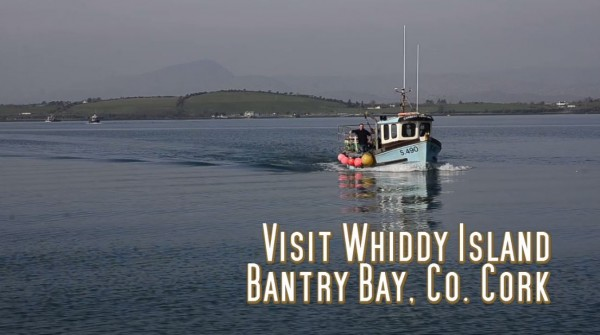 visit whiddy island