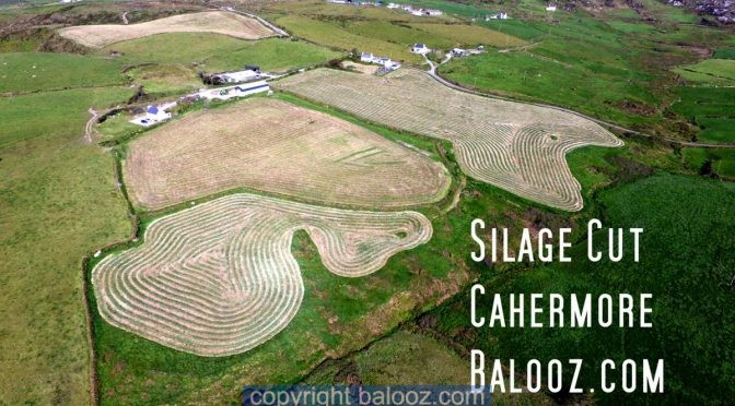 Cahermore Silage 2019
