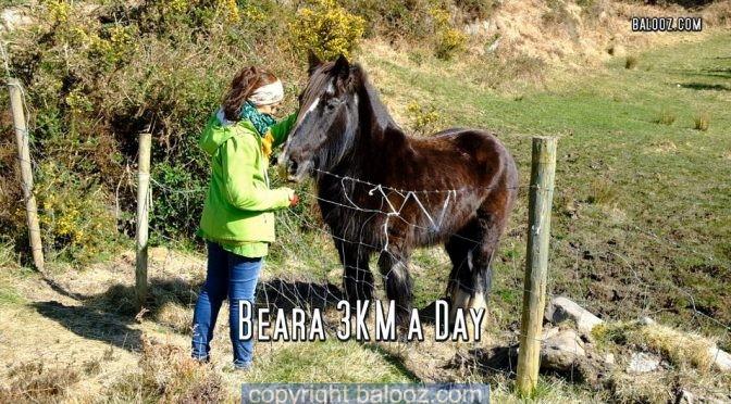 Beara 3K a day walk 1