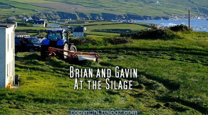 "Brian and Gavin ""At the Silage"""